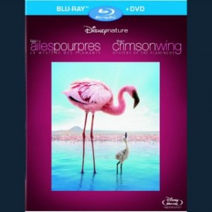The Crimson Wing: Mystery of the Flamingos – Blu-ray/DVD Combo Edition