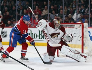 montreal canadiens vs arizona coyotes