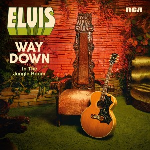 elvis way down in the jungle room