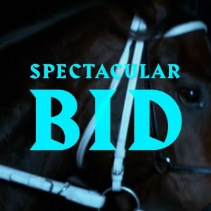 norma spectacular bid