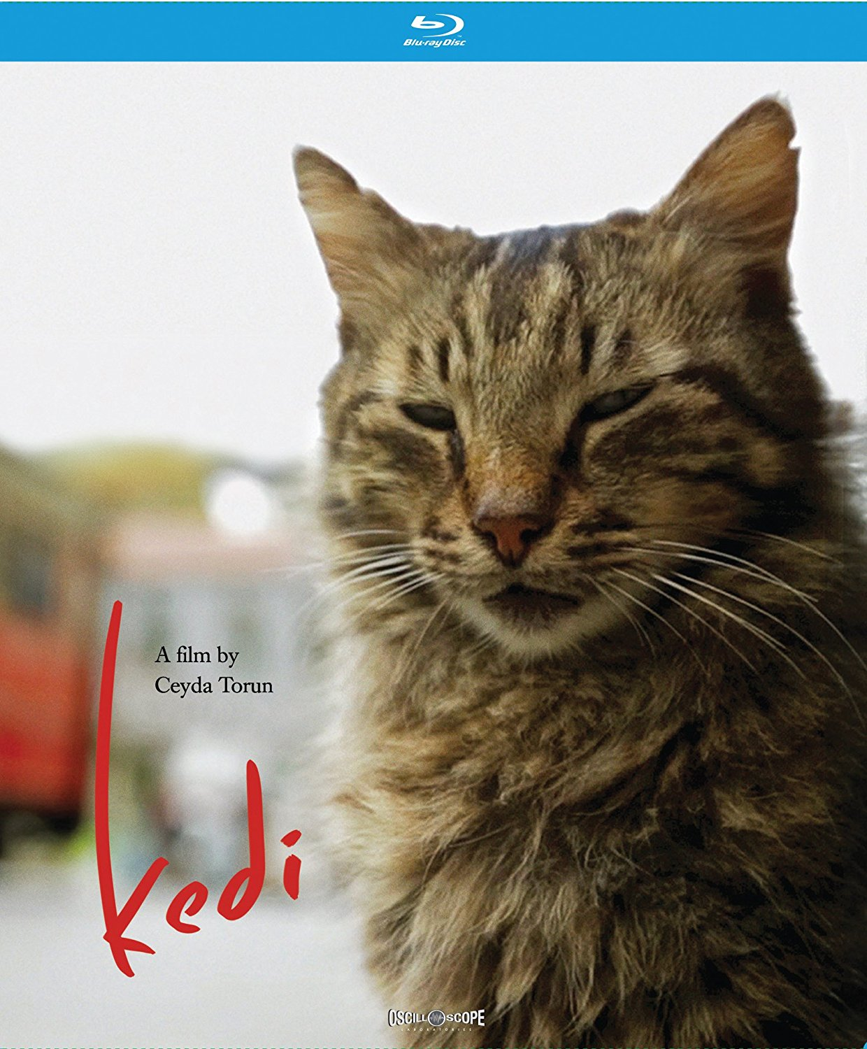 Kedi – Blu ray Edition