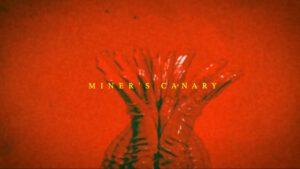 """VANESSA CARLTON – """"Miner's Canary"""""""