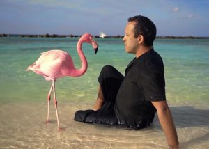 The Mystery of the Pink Flamingo