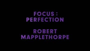 Focus: Perfection – Robert Mapplethorpe – Preview