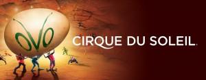 Cirque du Soleil's Ovo Makes its Return