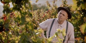 FROM THE VINE, starring Joe Pantoliano – Available on Digital July 10th