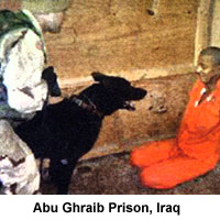 America's Brutal Prisons on OVID.tv