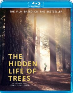 THE HIDDEN LIFE OF TREES; Jörg Adolph's Immersive Documentary Comes To Blu-ray on November 2