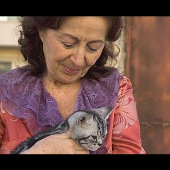 Mrs. Moskowitz and the Cats @ Montreal Israel Film Festival