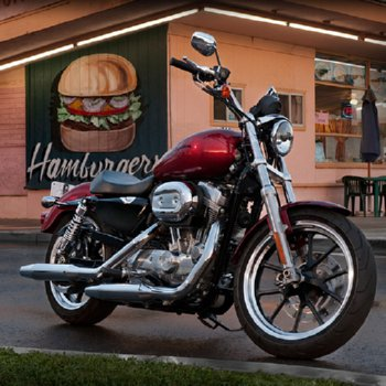 The Harley Show Preview